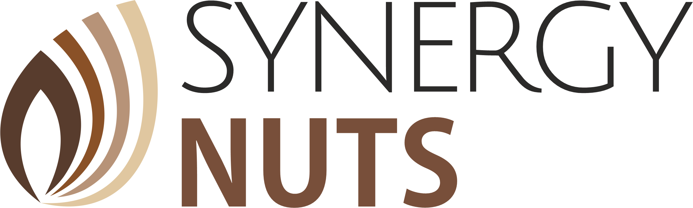 cropped Synergynuts Logo