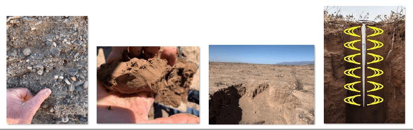 diferentes suelos para almendro en seto