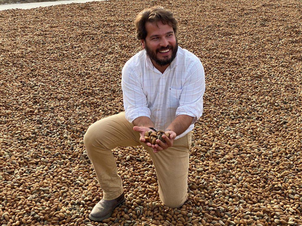 primera cosecha de una plantación VeraCruz
