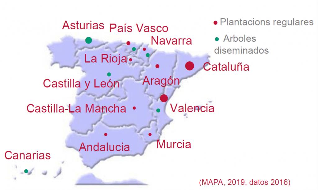 mapa de plantación de avellanos
