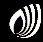 Logo blanco Synergynuts